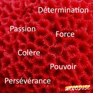 signification rouge